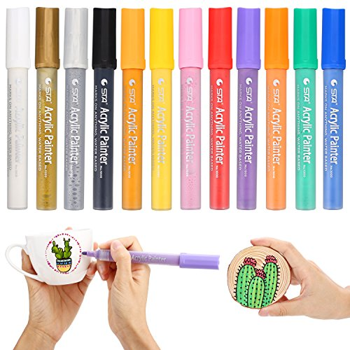 Premium Acrylic Paint Markers Pen by SOLEDI Water Resistant Art Permanent Paint Pens for Painting on Rock, Glass, Canvas, Fabric, Metal, Wood, Ceramic, Mugs, DIY Craft Projects, Set of 12 Colors by SOLEDI