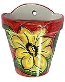 Cheap Wall Flower Pot – Spanish Sunflower