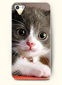 OOFIT Phone Case Design with Cute Kitten for Apple iPhone 4 4s 4g