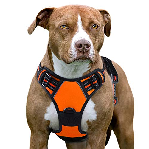 Eagloo Dog Harness No Pull, Walking Pet Harness with 2 Metal Rings & Handle Adjustable Reflective Breathable Oxford Soft Padded Easy Control Front Clip Vest Harness Outdoor for X-Large Dogs Orange