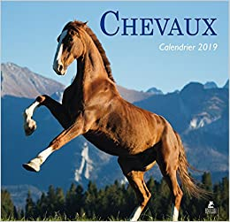Chevaux - Calendrier 2019