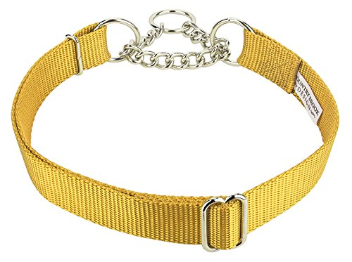 10-pack-half-check-nylon-dog-collars-various-sizes-colors-available-gold-medium
