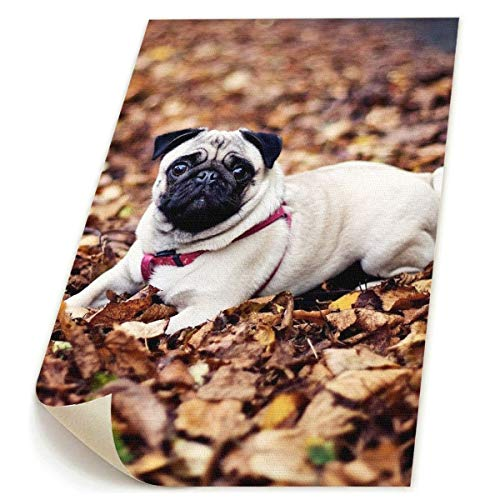 Little Monster Pug-Sitting-in-The-Leaves HD Non-Framed Painted On Canvas Wall Decorations Modern Art Child Bedroom
