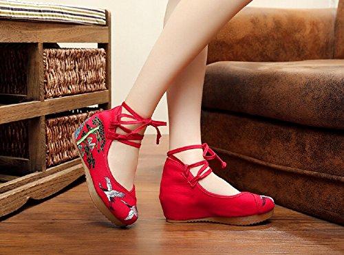 Bailarinas Lazutom Red mujer para para Bailarinas Lazutom mujer xqtgP4T