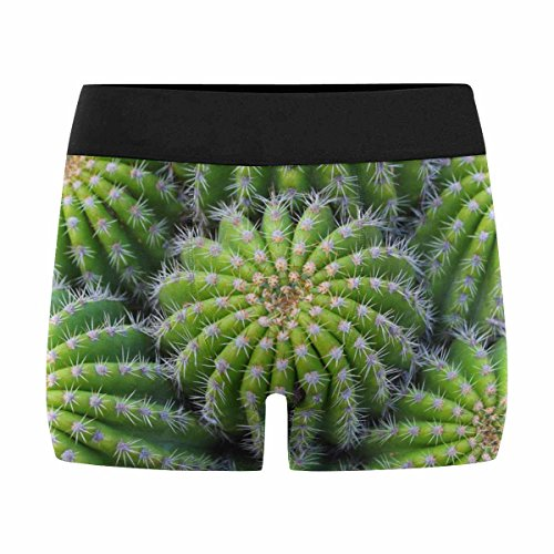 InterestPrint Custom Men's Boxer Briefs Cactus Plant XL by InterestPrint