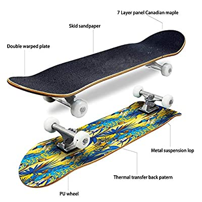 EFTOWEL Skateboards Tropical Floral Seamless Background Pattern Palm Leaves Flowers Birds Classic Concave Skateboard Cool Stuff Teen Gifts Longboard Extreme Sports for Beginners and Professionals : Sports & Outdoors