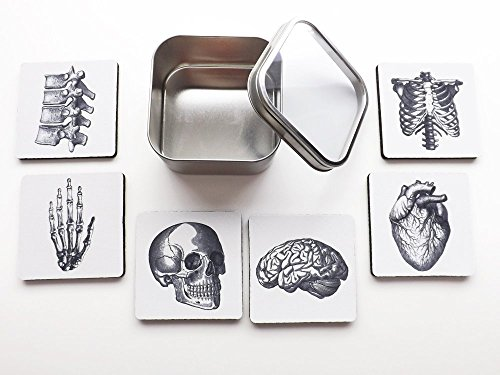 human-anatomy-square-coasters-gift-tin-coasters-neoprene-brain-skull-anatomical-heart-skeleton-medic