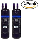 2 PACK Refrigerator Water Filter (1) Replacement for 10295370/A 469081 46-9930 Filter