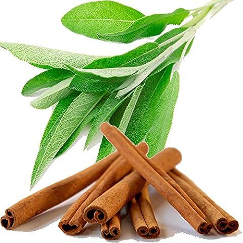 Sage & Cinnamon Spice Perfume Roll On Fragrance Oil EXTRA STRONG 0.40oz/12ml - Cinnamon Scented Perfume