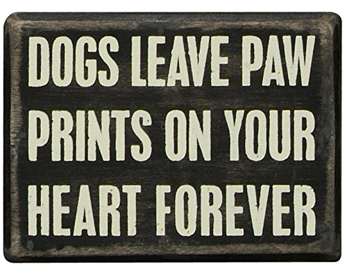 Primitives by Kathy Classic Box Sign, 4