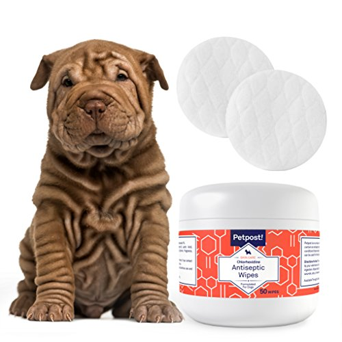 Petpost-Chlorhexidine-Wipes-50-Antiseptic-Wipes-for-Dogs-Cats-Horses-with-Skin-Infections-or-Hotspots