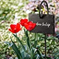 Homemaxs Plant Label, 10pcs Garden Markers Signs Weatherproof Reusable Natural Slate Hanging Tags on Stainless Steel Metal Hanger Rod Stakes Garden Labels for Flower Bed, Pots, Planters
