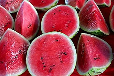Watermelon Seeds - Crimson Sweet - Heirloom - Liliana's Garden