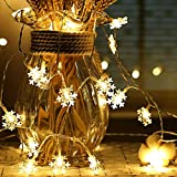 Snowflake Fairy Lights, 6M 40Pcs LED Battery Powered String Lights, Two Mode Monochrom and Shining Decoration for Christmas Wedding Birthday Holiday Party Bedroom Indoor& O