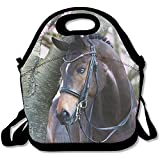 Starophi Lightweight Beautiful Arabian Horse Lunch Bag Lunch Box Handbag 3D Animal Prints For Kids And Adults