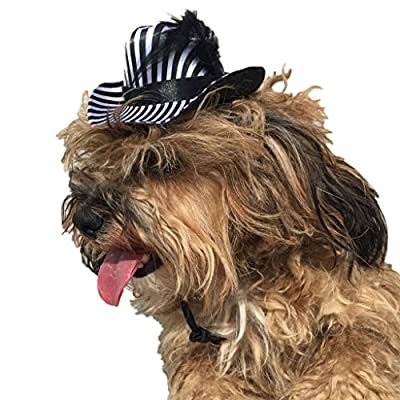 SupremeLife Pet Striped Cowboy Hat With Feather Dog Cat Cap Accessories Outdoor