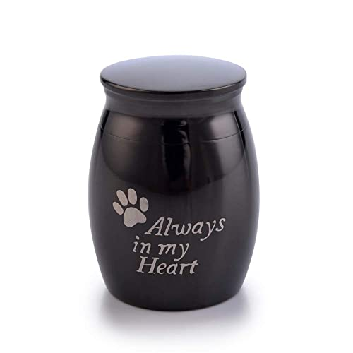 Sunling in My Heart Paws Engraved Small Stainless Steel Decorative Memorial  Keepsake Cremation Urns Jar for Human Pet Ashes Funeral Bottle Holder for