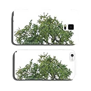 Freigestellter old Mirabelle tree with many ripe fruits cell phone cover case Samsung S6