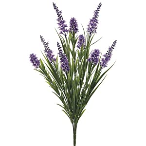 "23"" Star Flower/Grass Bush x6 Lavender Green (Pack of 12) 28"