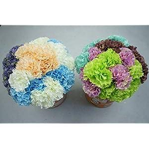 Lily Garden 12 Stems Artificial Carnation Flower Silk Bouquet (Green) 3