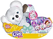 Little Live Pets Cozy Dozy Kip The Koala Bear - Over 25 Sounds and Reactions | Bedtime Buddies, Blanket and Pa