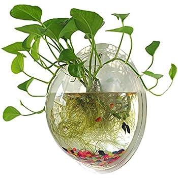 Desktop Aquaponics Mini Garden For Goldfish Pet Supplies Beta Mpoint Tank Ture 100% Guarantee
