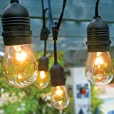 Fantado 10 Suspended Socket Outdoor Grade Patio Commercial String Light Set, S14 Bulbs, 21 FT Black Cord w/E26 Medium Base, Weatherproof by PaperLanternStore