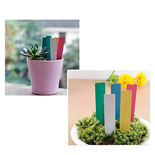 KLOUD City® 100Pcs 2x10MM Turquoise Blue Plastic Durable Plants Seed Lables/ Flower Marks/ Garden Nursery Stake Tags for Planters, Plant Pot, Seedling Starter Trays