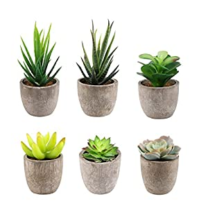 Yoodelife Artificial Faux Succulents Decorative Fake Cactus Aloe Cacti Plants Gray Pots, Realistic Looking Assortments 5