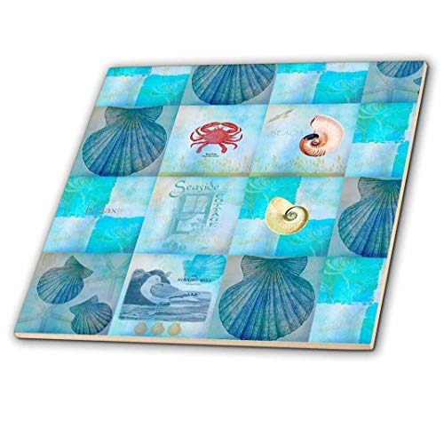 (3dRose ct_79384_1 Aqua Beach Seashell Collage Art Ceramic Tile, 4