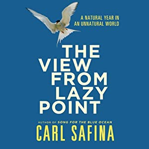 The View From Lazy Point Audiobook