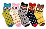 V28 Women's Cute Owl Various Pattern Mixed Color Soft Socks (One Size, 5 Mixed Colors Set)