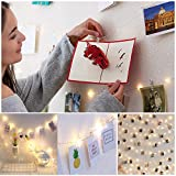 Tools & Hardware : Legros8 Photo Clip String Lights Fairy String Lights with Clear Clips for Hanging Pictures Wall Decor Outdoor String Lights