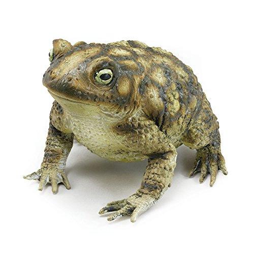 (Bristol Novelty AK049 Rubber Toad Prop)