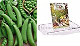 buy Homegrown Pea Seeds, 130 Seeds, Organic Super Snappy Pea now, new 2020-2019 bestseller, review and Photo, best price $5.01