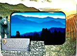 Great Smoky Mountains National Park Picture Frame Fridge Magnet