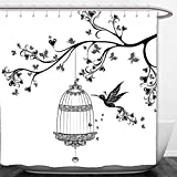 Interestlee Shower Curtain Hummingbirds Decorations Collection Birds Out of Cages Spring Birdcage on Branch Wings Tail Romantic Love Heart Image Black