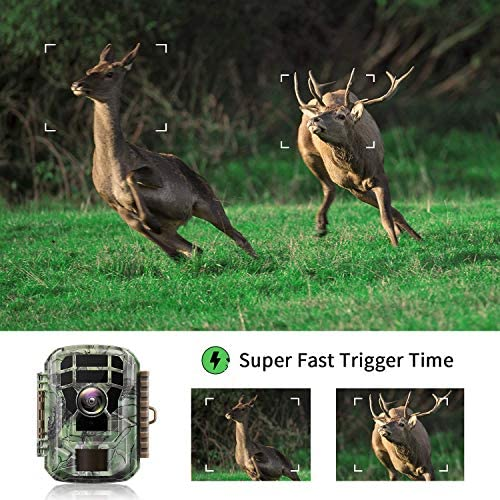 "【2020 Upgrade】 Campark Mini Trail Camera 16MP 1080P HD Game Camera Waterproof Wildlife Scouting Hunting Cam with 120° Wide Angle Lens and Night Vision 2.0"" LCD IR LEDs 519dLaao4 2BL"