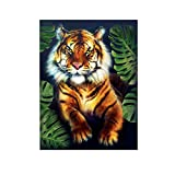DIY 5D Diamond Painting Kit, Hoshell 5D Cute Animal Embroidery Paintings Rhinestone Pasted DIY Diamond Painting Cross Stitch Partcial Drill Kits (C3)