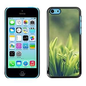 Weed Verde OYAYO iPhone 5C //Dise?os frescos para todos los gustos! Top muesca protección para su teléfono inteligente!