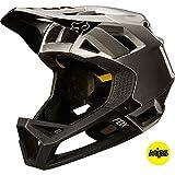 Fox Racing Proframe Helmet Black/Silver, S