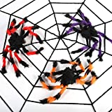 Giant Spider Web 12 ft for Halloween Decoration Outdoor with 3 Creepy Colorful Spiders 12 In
