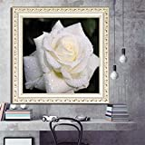 Allywit 5D Full Square Drill Embroidery Paintings Rhinestone Pasted DIY White and Red Rose Diamond Painting