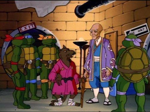 White Belt, Black Heart (Ninja Turtles Sensei)