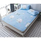 Washable Mat Tiansi Air Conditioning Soft Seat Summer 1.5 Meters Folding Mat Ice Silk Mat Three Sets ZXCV (Color : Blue, Size : 120200xm)