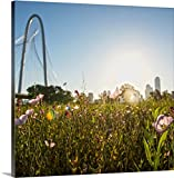 greatBIGcanvas Gallery-Wrapped Canvas entitled Field of flowers in Dallas by Circle Capture 35''x35''