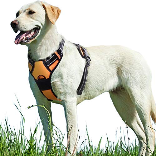 Eagloo No Pull Dog Harness with Front Clip,Walking for sale  Delivered anywhere in Canada