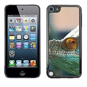 A-type Arte & diseño plástico duro Fundas Cover Cubre Hard Case Cover para Apple iPod Touch 5 (Camaleón Misteriosa)