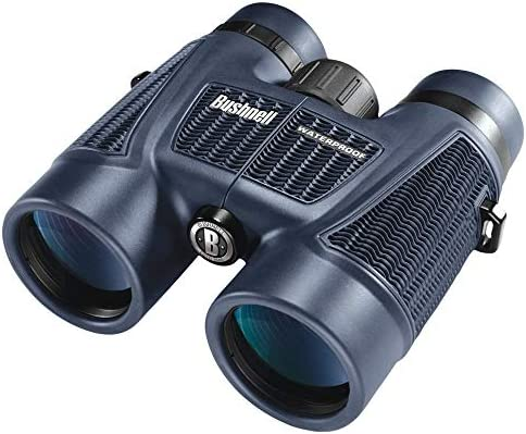 Bushnell H2O Waterproof Fogproof Roof Prism Binocular, 8 x 42-mm, Black Renewed