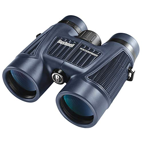 (Bushnell H2O Waterproof/Fogproof Roof Prism Binocular, 8 x 42-mm, Black (Renewed))
